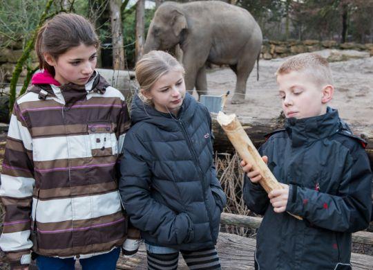 Zoounterricht
