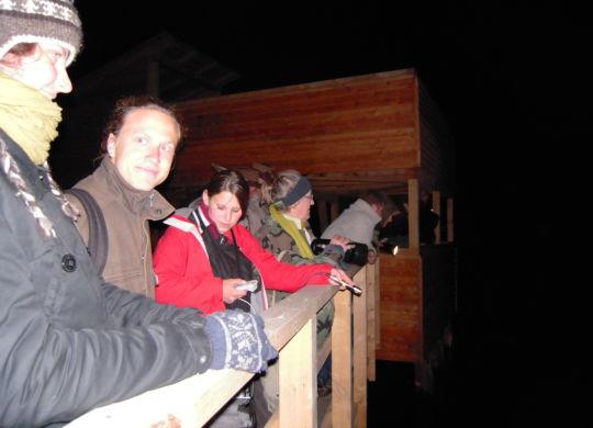 Fledermaus-Abend am Federsee 1 - Bildquelle Kerstin Wernicke