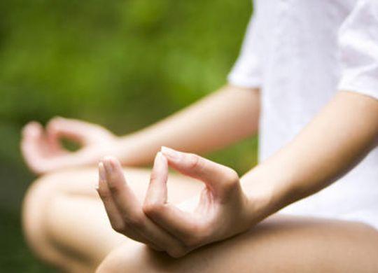 skal_Yoga im Luisenpark
