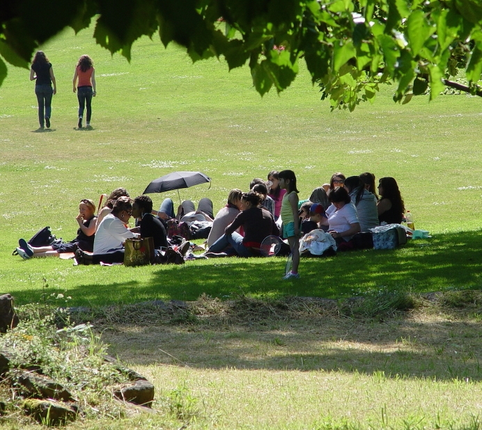 skal_picknick
