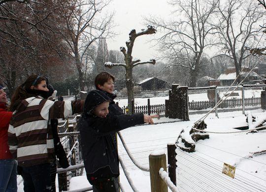 SLK_Winter_Zoo_Heidelberg
