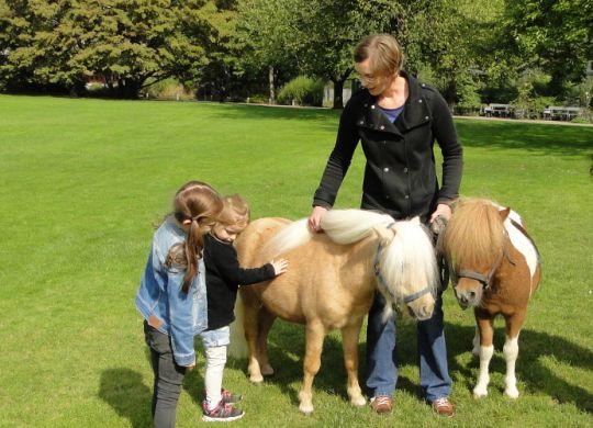 Luisenpark_Mannheim_Pony-ABC