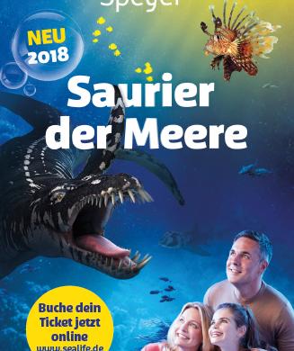 Titelblatt Flyer