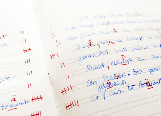Viele Rechtschreibfehler