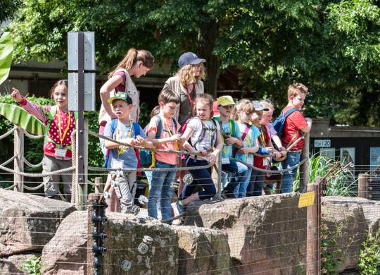 Pfingstferien mit der Zooschule (Susanne Reichardt_Zooschule Heidelberg)