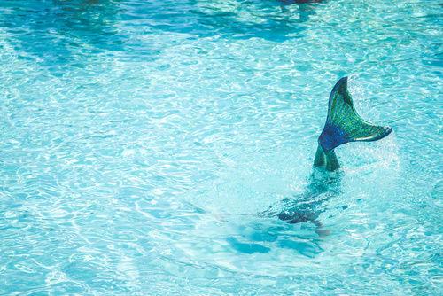 Mermaid in the Pool