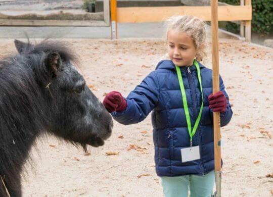 Herbsferien (Uwe Merkel_Zooschule HD
