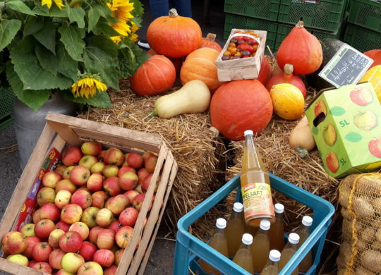 Neckargemuend_Herbstmarkt